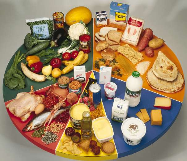 Balanced Diet for Learning and Teaching