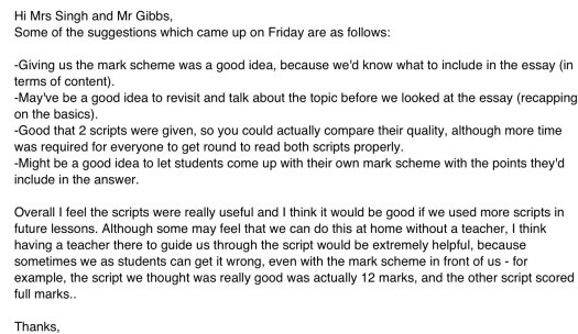 Student email giving feedback on the process.