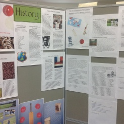 History projects exploring the history of cricket in different countries