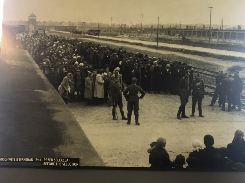 Men separated from women and children prior to medical selection. Most went straight from here to the gas chambers.