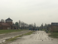 Birkenau - the scale of the site is hard to comprehend.